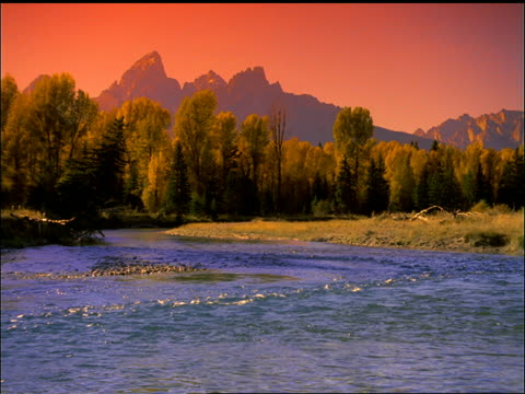 slight pan of snake river with forest and mountains in background / grand teton national park, wyoming - parco nazionale del grand teton video stock e b–roll
