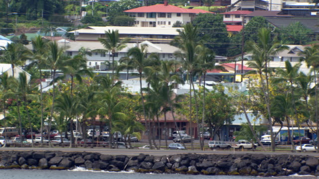 slight zoom-out on waterfront street in hilo, hawaii - hilo stock videos & royalty-free footage
