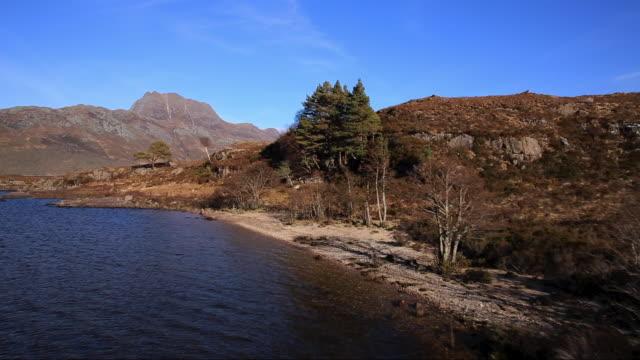 slioch (981m) & loch maree near kinlochewe, northern highlands of scotland - bare tree stock videos & royalty-free footage