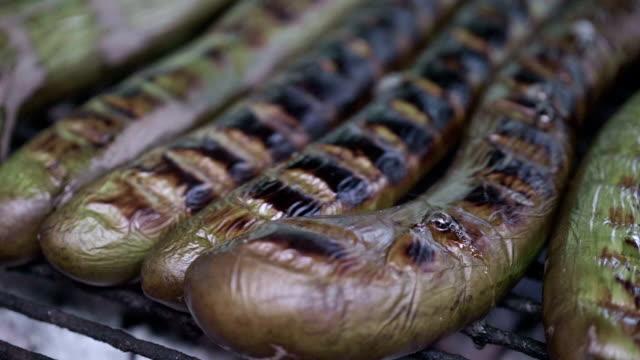slo mo baking eggplant - aubergine stock videos & royalty-free footage