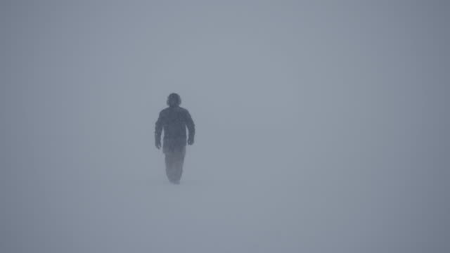 slomo lone man walks through blizzard - warm clothing stock videos & royalty-free footage