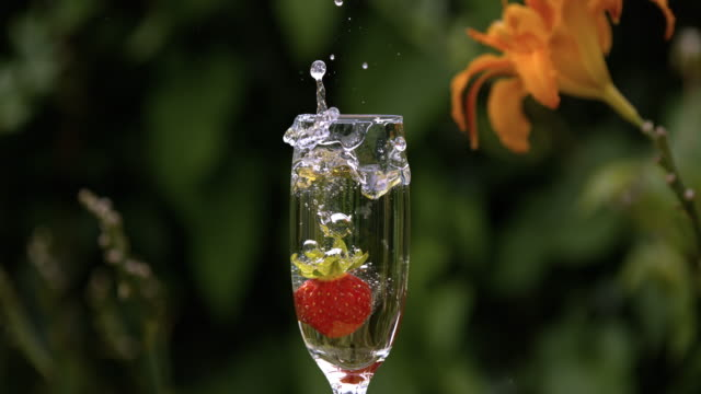 slomo strawberry falling in champagne - drinking glass stock videos & royalty-free footage