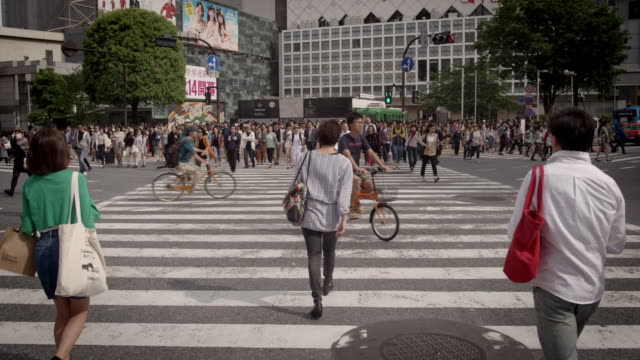 slomo views of a pedestrian crossing, japan - pedestrian crossing stock videos & royalty-free footage