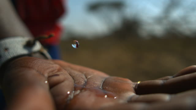 slomos water droplets falling onto a hand, serengeti - unesco world heritage site stock videos & royalty-free footage