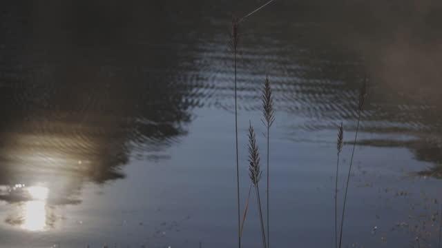 朝のスローモーション美しい湖 メーホンソンタイ - 最大点の映像素材/bロール
