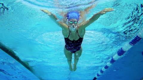stockvideo's en b-roll-footage met hd slo-mo: onderwater schot van jonge vrouwen schoolslag zwemmen - swimming