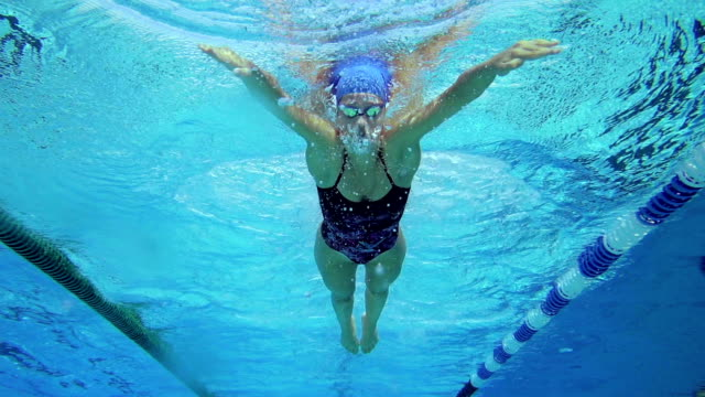 hd slo-mo:underwater shot of young women swimming breast stroke - swimming stock videos & royalty-free footage