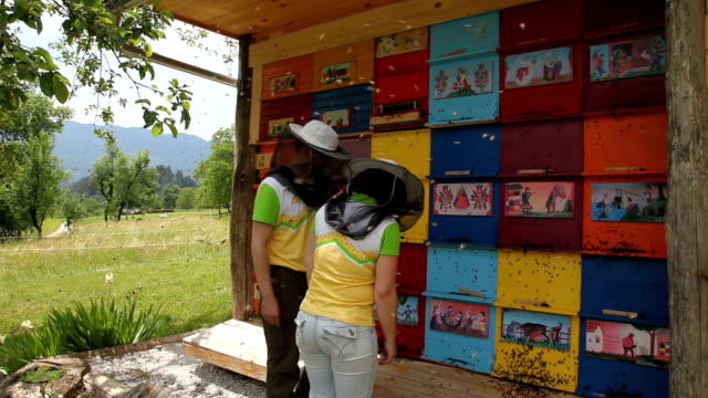 stockvideo's en b-roll-footage met slovenia, bled, pair of beekeper controls honey production of their bees - slovenië