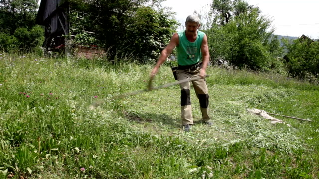 slovenia, bohinj, farmer who mows the lawn with a scythe by hand - scythe stock videos and b-roll footage