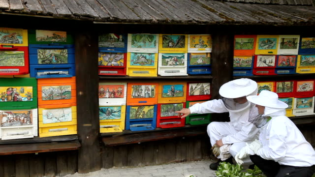 Slovenia, Kranjska Gora, Ratece, pair of farmers in front at a painted beehive according to the Slovenian tradition
