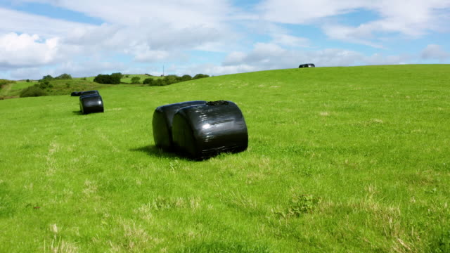 slow dolly shot towards bales of silage or hay wrapped in black plastic in a field in rural dumfries and galloway, south west scotland - johnfscott stock videos & royalty-free footage