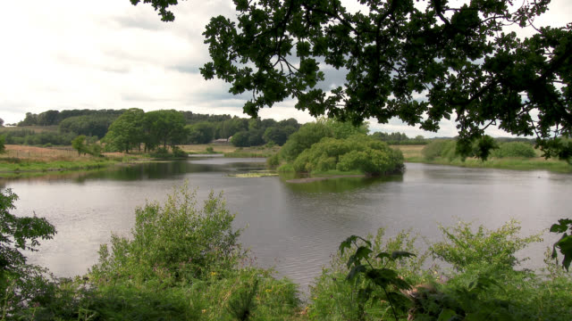 slow flowing scottish river in summer - johnfscott stock videos and b-roll footage