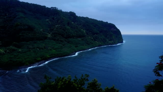 Lente survolant à la cime des arbres au-dessus de la baie de l'eau à Maui
