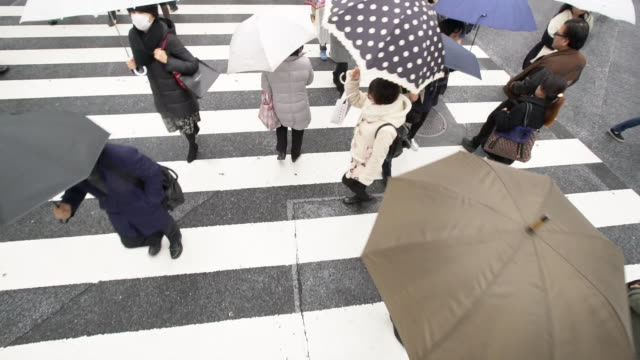 vídeos de stock e filmes b-roll de ws slow mo people crossing the street in rain - chapéu