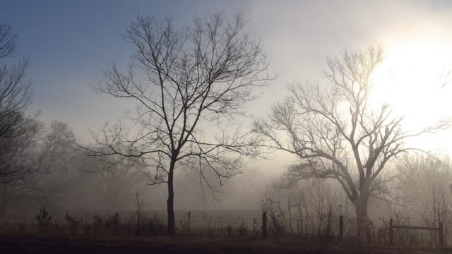 Slow Mo Shot of Ranch in the Dense Foggy Morning at Sunrise