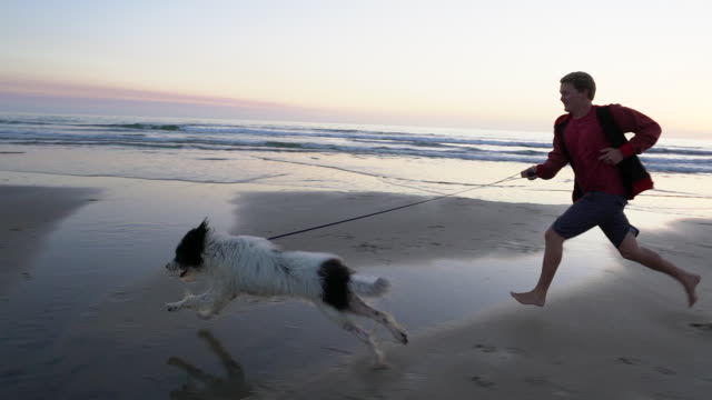 slow mo young man running down the beach with his dog - pet leash stock videos and b-roll footage