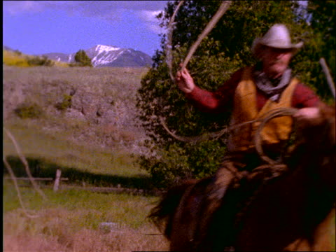 slow motion 2 cowboys on running horses spinning lassos / montana - animal hair stock videos & royalty-free footage