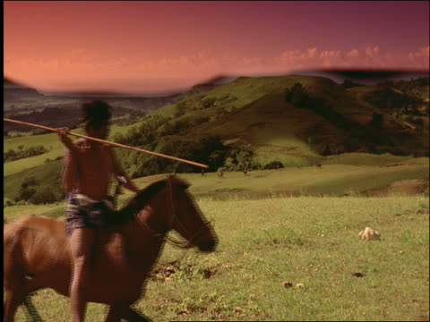slow motion 3 asian men with wooden spears pass camera on horses / pasola / sumba / indonesia - pflanzenfressend stock-videos und b-roll-filmmaterial