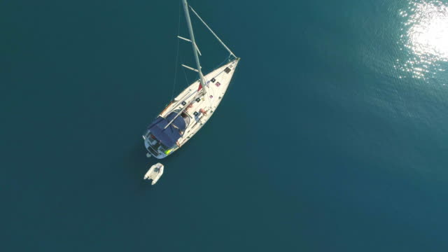 ms slow motion aerial view man jumping off sailboat into sunny blue ocean - yacht stock videos & royalty-free footage