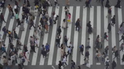 Slow Motion Aerial View Of Tourist Pedestrian crowded in Shibuya , Japan.