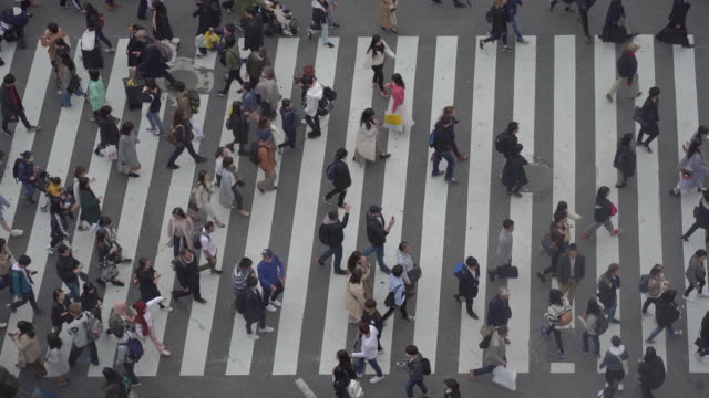 slow motion aerial view of tourist pedestrian crowded in shibuya , japan. - zebra crossing stock videos & royalty-free footage