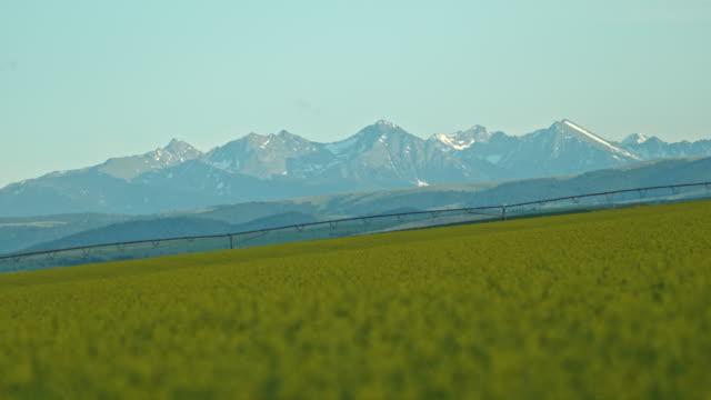 slow motion agriculture farmland farming irrigation - sprinkler stock videos & royalty-free footage