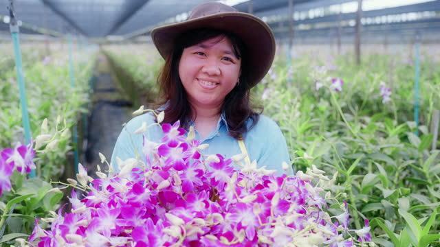 4kスローモーション:アジアの女性農家は、品質管理、農業や農業産業の概念を収穫したり、検査蘭の農場を歩いています。 - 農学者点の映像素材/bロール