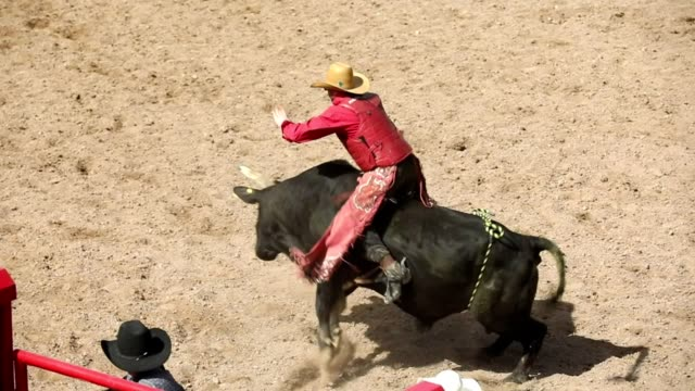 slow motion bull ride rodeo arena - rodeo stock videos & royalty-free footage