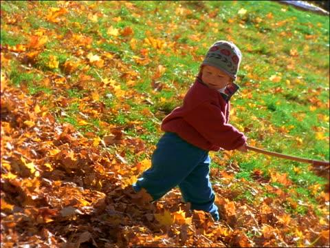 vídeos de stock e filmes b-roll de slow motion child playing in autumn leaves with rake - ancinho equipamento de jardinagem