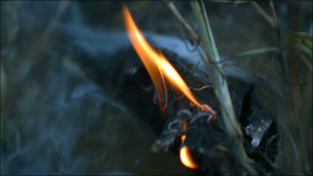 Slow motion close shot of grass on fire.