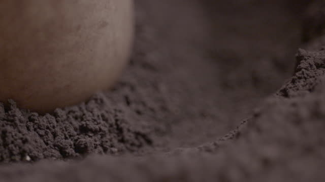 slow motion close shot of red ochre being ground with a mortar and pestle. - ground culinary stock videos & royalty-free footage