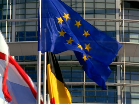 slow motion close up eu flag + others in front of louise weiss eu parliament building / strasbourg, france - authority stock-videos und b-roll-filmmaterial