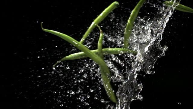 slow motion close up green beans flying through splash of water - グリーンビーンズ点の映像素材/bロール