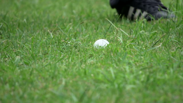 Slow motion: Close Up Of A Tee Shot