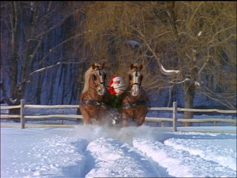 slow motion close up pair of horses pulling Santa in sleigh towards camera