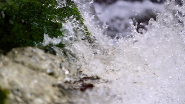 slow motion close-up beautiful shot of waterfall over moss on rock formation - kauai, hawaii - moss stock videos & royalty-free footage