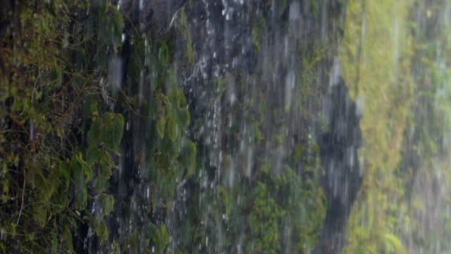 slow motion: close-up of amazing water curtain in the jungle - 石材点の映像素材/bロール