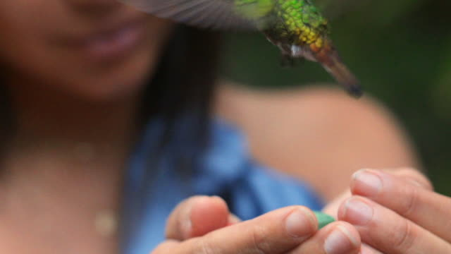 slow motion: close-up of young woman holding a bird waterer for hummingbird - kolibri stock-videos und b-roll-filmmaterial