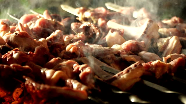 slow motion. cooking barbecue. - azerbaigian video stock e b–roll