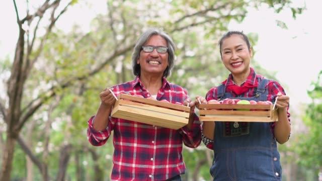 vídeos y material grabado en eventos de stock de cámara lenta: granjero pareja sosteniendo la canasta de manzana y la sonrisa. - cajón para embalar