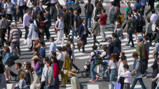 stockvideo's en b-roll-footage met slow motion crowd voetgangers crossing in shibuya crossing in dag tijd, tokio, japan - stadsdeel