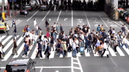 Slow Motion - Crowds of People Walking on a Crosswalk