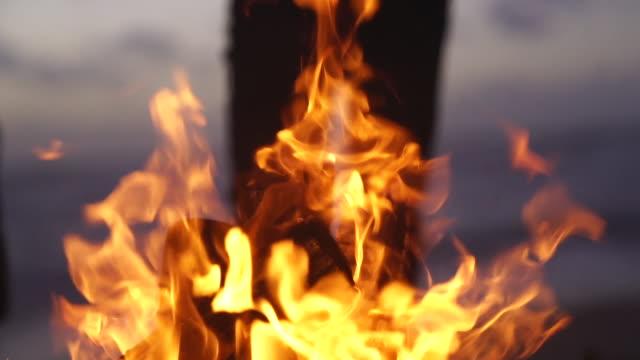 vídeos de stock, filmes e b-roll de o detalhe do movimento lento disparou de uma fogueira - firewood