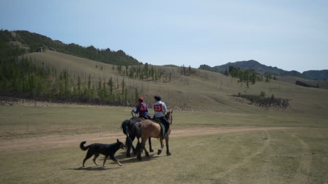 slow motion: dog walking with boys horseback riding on field against sky - ulaanbaatar, mongolia - ulan bator stock videos & royalty-free footage