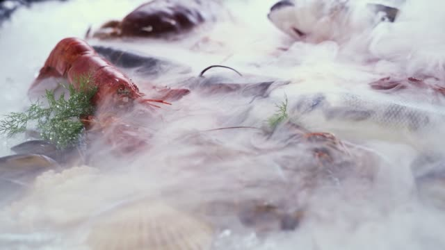 vídeos de stock e filmes b-roll de fhd slow motion dolly right: variety of luxury fresh seafood, lobster salmon mackerel crayfish prawn octopus mussel and scallop, on ice background with flow of icey frozen smoke. fresh frozen seafood on ice and retail market concept. - peixe congelado