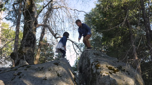 slow motion dolly shot of siblings jumping on rocks in forest - nur kinder stock-videos und b-roll-filmmaterial
