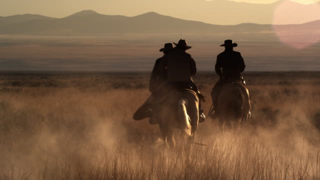 slow motion dusk shot of cowboys riding towards mountains. - all horse riding stock videos and b-roll footage