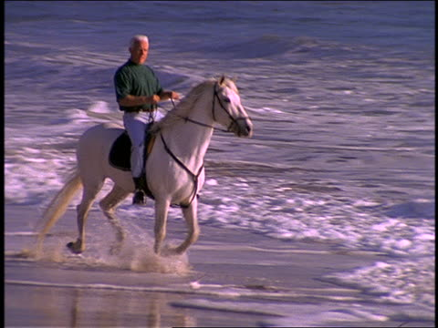 slow motion PAN of elderly man riding horse in surf on beach