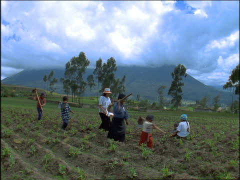 slow motion family with tools walking thru fields / mountains in background / ecuador - ecuador stock videos & royalty-free footage