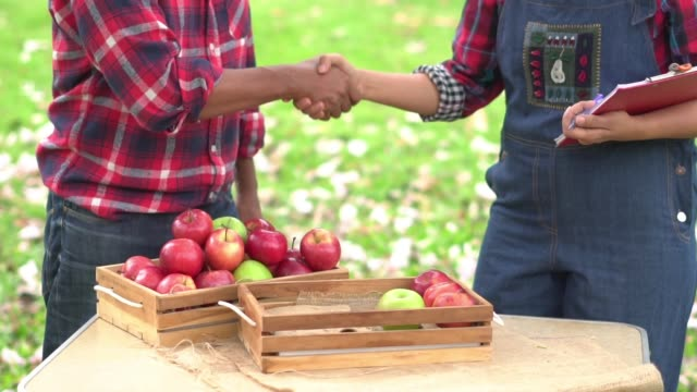 slow motion: farmer shaking hand for trading of apple. - orchard stock videos & royalty-free footage